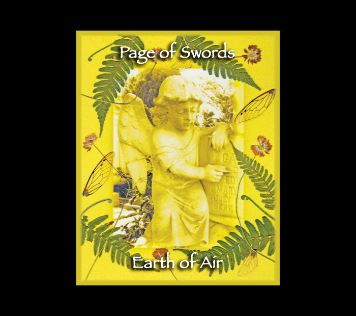 Cemetarot Court Card: Page of Swords / Pressed with Fern, Clover, & Cicada Wings (Witch Hazel Press ©)