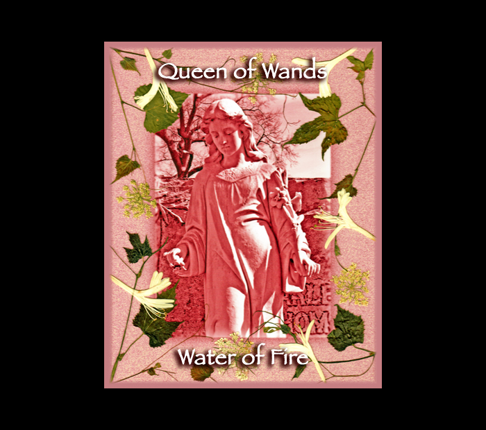Cemetarot Court Card: Queen of Wands / Pressed with Vine, Queen Anne's Lace, & Honeysuckle (Witch Hazel Press ©)