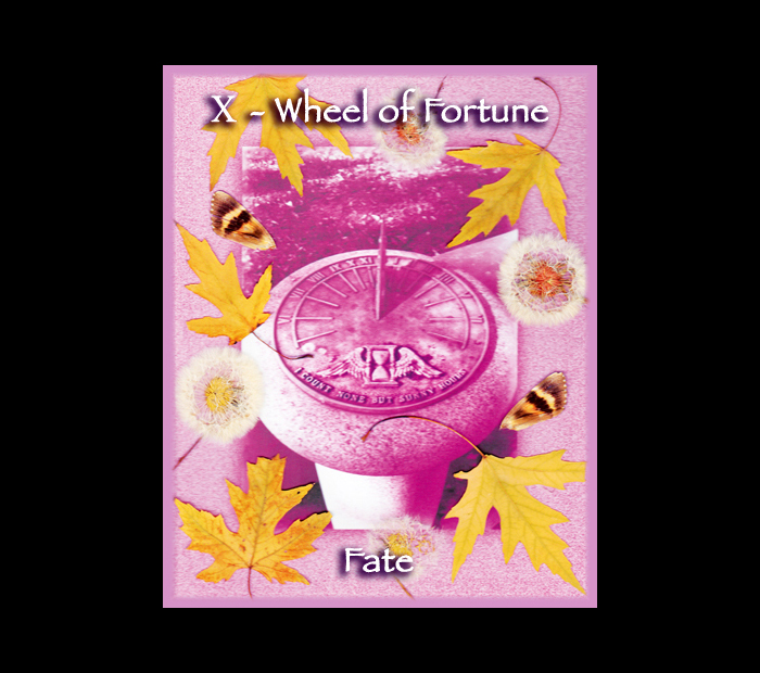 Major Arcana: Wheel / Pressed with Maple, Dandelion, & Moth Wings (Witch Hazel Press ©)