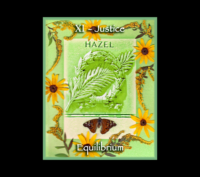 Major Arcana: Justice / Pressed with Goldenrod, Rudbekia, & Butterfly Wings (Witch Hazel Press ©)
