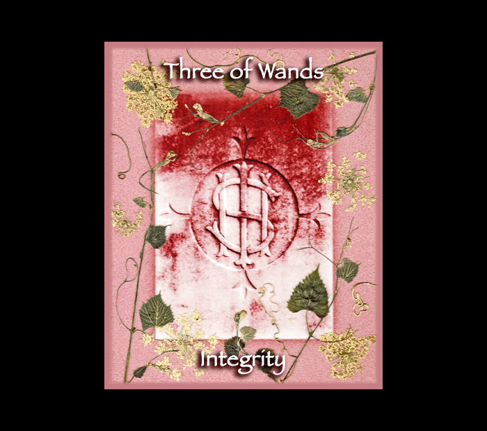 Minor Arcana: Wands 03 / Pressed with Vine & Queen Anne's Lace (Witch Hazel Press ©)