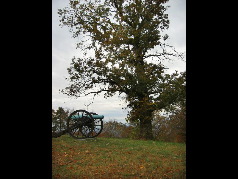Battles for Chattanooga: [2007] The oak and cannon at the peak of Tunnel Hill, tree growth now beginning to obscure Lookout Mountain 11 years after 1996 picture