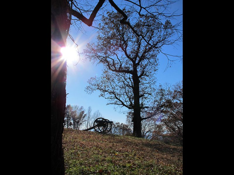 Battles for Chattanooga: [2014] The oak and cannon at the peak of Tunnel Hill, Lookout now almost totally obscured by tree-growth