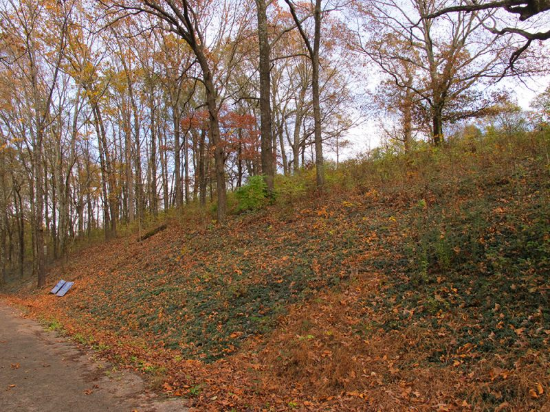 Battles for Chattanooga: [2015] The west-facing slope of Tunnel Hill, scene of fierce fighting; the forested scene true to the actual terrain of 1863
