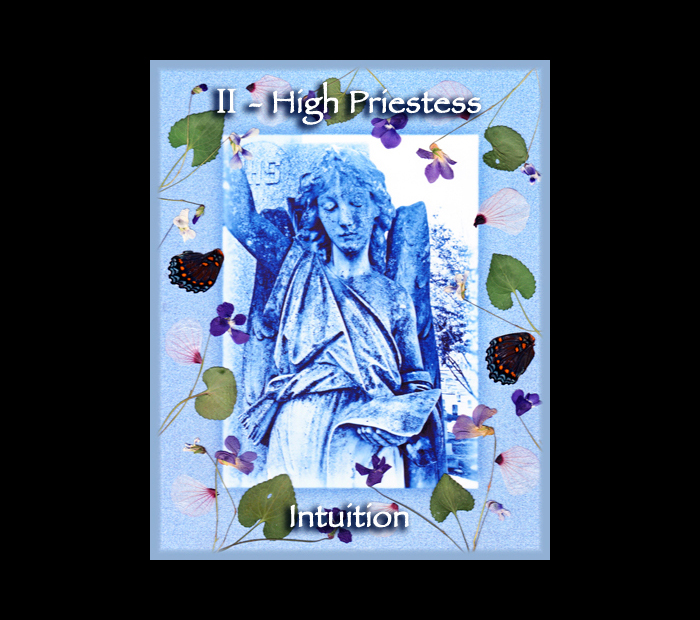 Major Arcana: High Priestess / Pressed with Violet, Mallow, & Butterfly Wings (Witch Hazel Press ©)