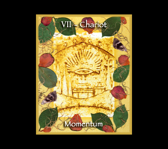 Major Arcana: Chariot / Pressed with Camellia & Moth Wings (Witch Hazel Press ©)