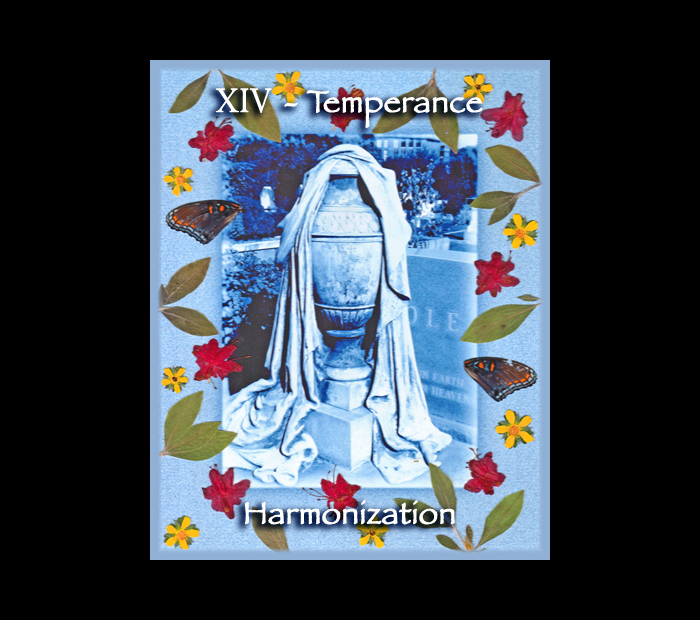 Major Arcana: Temperance / Pressed with Azalea, Cinquefoil, & Butterfly Wings (Witch Hazel Press ©)