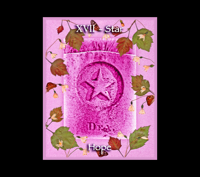 Major Arcana: Star / Pressed with Hawthorn, Snowdrop, & Butterfly Wings (Witch Hazel Press ©)