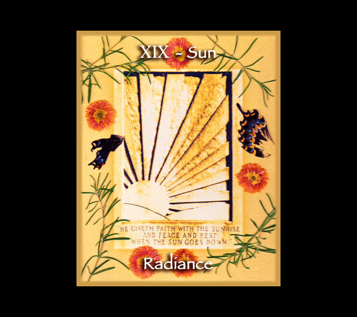 Major Arcana: Sun / Pressed with Rosemary, Mum, & Butterfly Wings (Witch Hazel Press ©)