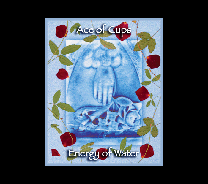 Minor Arcana: Cups 01 Ace / Pressed with Briar & Rose (Witch Hazel Press ©)