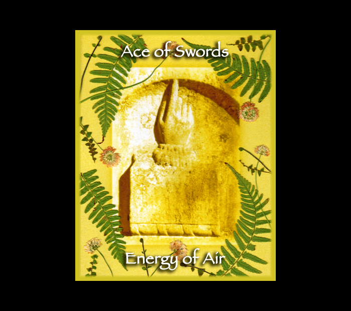 Minor Arcana: Swords 01 Ace / Pressed with Fern & Clover (Witch Hazel Press ©)